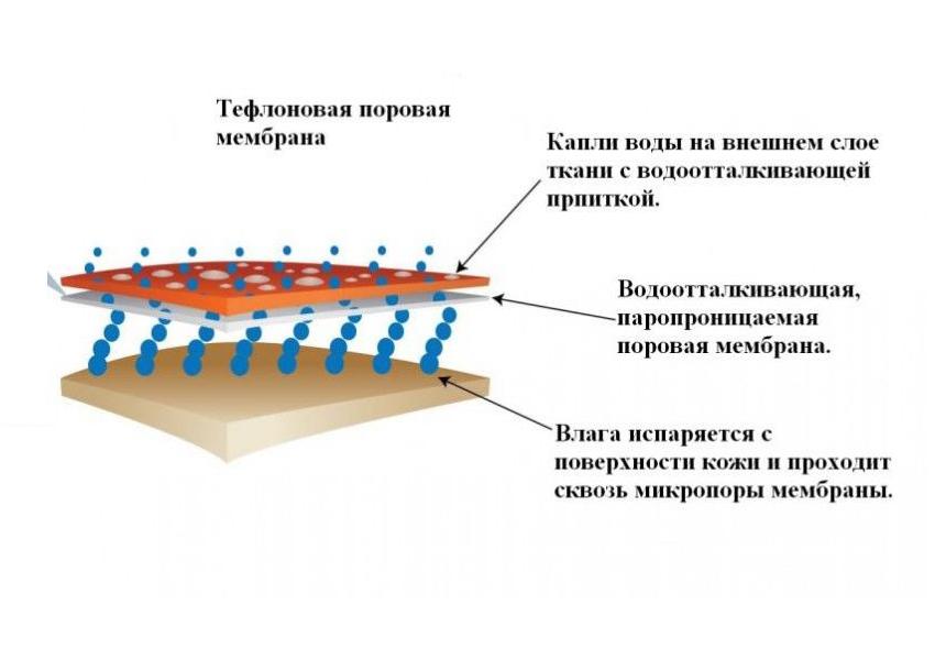 Мембранная ткань