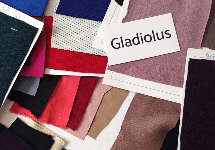 Бренд женской одежды «Gladiolus»