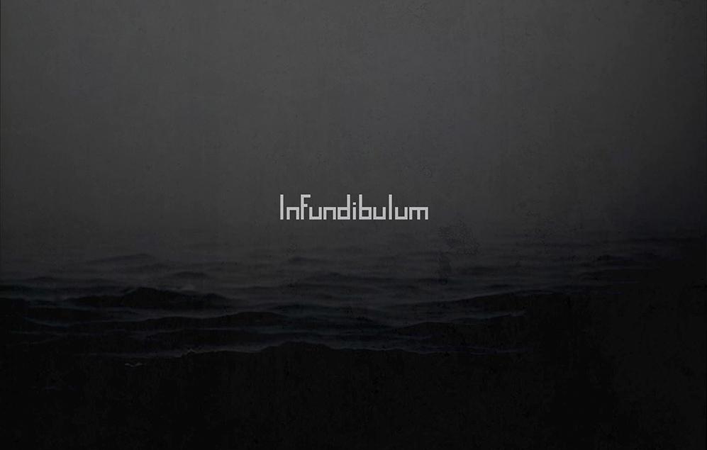Infundibulum