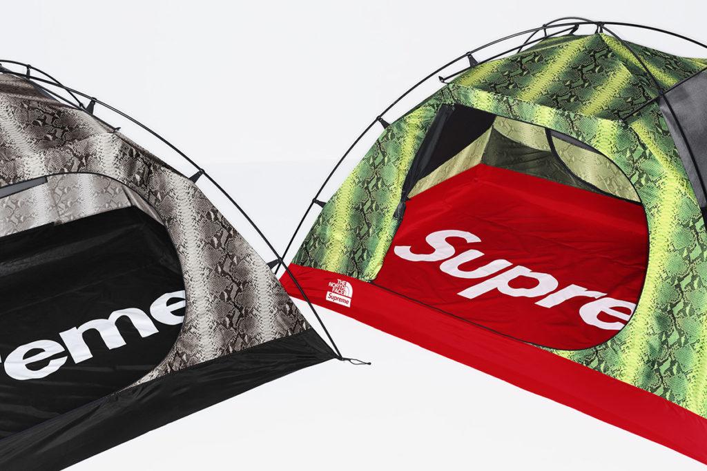 supreme-the-north-face 3