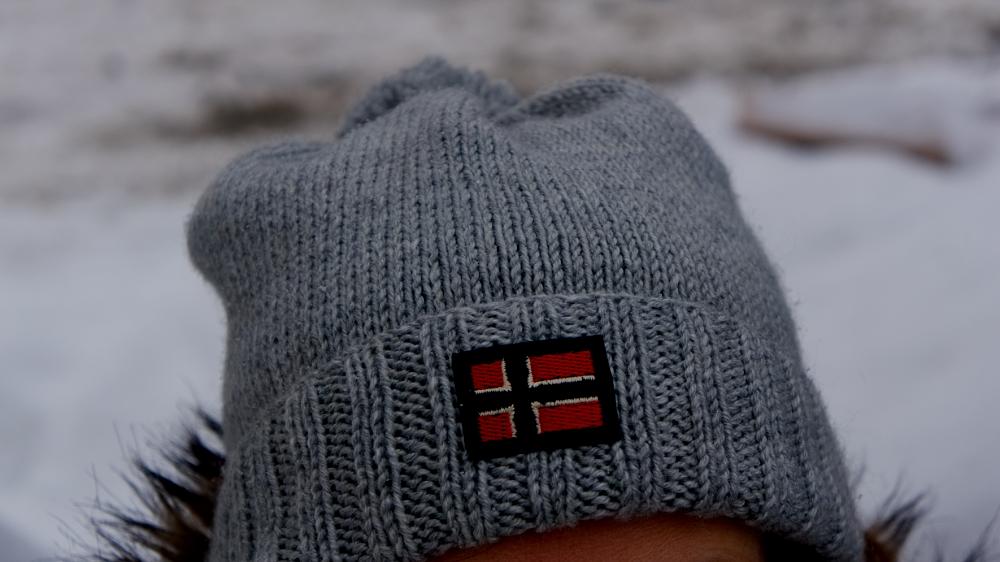 шапка логотип новегия